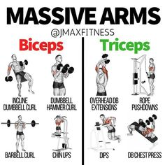 Here are the best exercises for hitting your biceps and triceps.These exercises are proven to have the highest peak contraction of your arms, which can lead to the most growth.I made the big mistake, in the past, of only training my arms once per week. Big Biceps Workout, Arm Workout Men, Bicep And Tricep Workout, Biceps And Triceps, Back And Biceps, Dumbbell Workout, Full Arm Workout, Chest And Tricep Workout, Chest Workout For Men