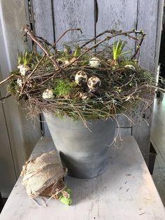 Greenery Wreath, Wreaths, Happy Easter, Flower Arrangements, Spring, Garden, Flowers, Plants, Summer