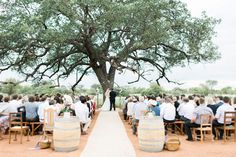 Contemporary Luxe Wedding by Louise Vorster Wedding Ceremony Decorations, Wedding Venues, Farm Photography, Aisle Style, Luxe Wedding, Bordeaux, Weddings, Bride, Contemporary
