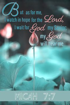 Micah 7:7 Being watchful