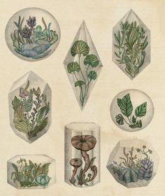 katie-scott: Floating Terrariums