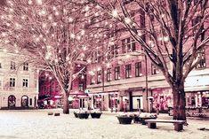 Holiday Lights, Christmas Lights, Lighting, Christmas Fairy Lights, Lights, Lightning