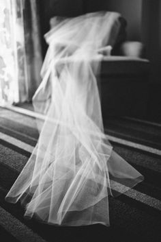 a to-die-for veil shot Photography by taylorlordphotogr. Wedding Images, Wedding Pictures, Wedding Styles, Wedding Veils, Wedding Poses, Wedding Ideas, Wedding Planning, Engagement Couple, Wedding Engagement