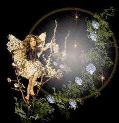 Photo of fairy for fans of Fairies 10517059 Baby Fairy, Love Fairy, Fantasy Demon, Fantasy Art, Angel Gif, Fairy Names, Gato Animal, Fairies Photos, Amazing Gifs