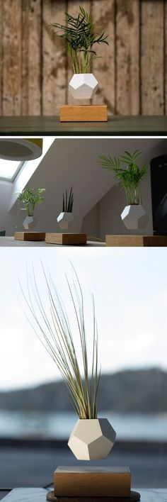 Designer Mobel Aus Holz Joyau Bilder   homei.foreignluxury.co