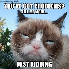 Image result for grumpy cat birthday quotes