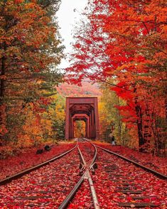 How Beautiful, Beautiful Pictures, Tourist Places, New Hampshire, Railroad Tracks, Location History, Seasons, Fall, Autumn