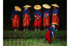 Rice Planting Festival, Japan