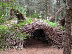 Artist weaves delightful 'bio-sculptures' & animal habitats out of wood (Video)