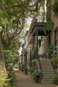 Savannah: Top 10 Places to Travel this December