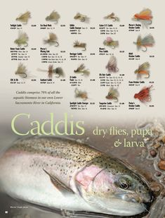 Fly fishing is an historic game, by using records of Romans around 200 AD Trout Fishing Tips, Fly Fishing Tips, Walleye Fishing, Fishing Knots, Sport Fishing, Gone Fishing, Carp Fishing, Fishing Lures, Fishing Tricks