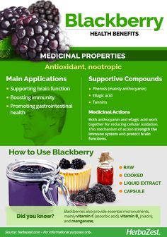HerbaZest - Info graphic: Blackberry with antioxidants for nutrition and is astringent for digestive health. For Your Health, Health And Wellness, Health Tips, Holistic Nutrition, Smart Nutrition, Nutrition Tracker, Nutrition Quotes, Proper Nutrition, Food Nutrition