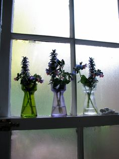 POSTER SIZED - Foggy Window and Flowers - still life photography - green, purple, gray, translucent, floral, fine art photograph