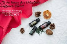 Home For Christmas Diffuser Blend | www.rootandwonder.com