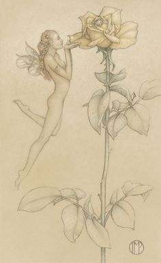 The Rose by Michael Parkes