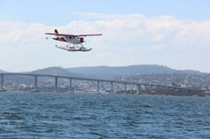 A Sea plane comes in to land with the Tasman Bridge that spans the Derwent River in the background. Hobart, Tasmania ©photo by jadoretotravel