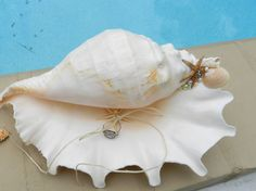 Well this is a unique way of getting the ring down the aisle! Shell Ring Bearer Pillow Alternative  Seaside Beach or by ChiKaPea, $27.00