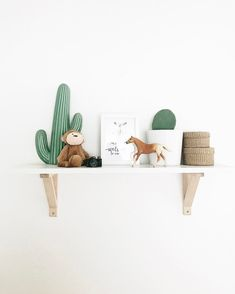 Southwest nursery shelf. With cacti