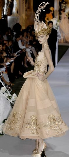 Couture Fall 2007 - Christian Dior