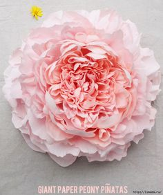 How to DIY Beautiful Giant Paper Peony