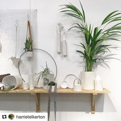 #Repost @harrietelkerton with @repostapp  A #shelfie from day two of @topdrawerlondon including pieces from the perforated range and the hanging vases with wire handles.  All to be found on the @design__factory stand C-H28  #craft #handmade #ceramic #porcelain #white #greenery #fern #rust #found #perforated #new #spring