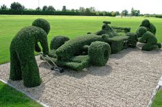 Do you have lots of bushes and hedges in your garden that need a tidy look? If yes then the best and creative solution would be topiary. Hedges, Amazing Gardens, Beautiful Gardens, Landscape Design, Garden Design, Landscape Art, Amazing Grass, Topiary Garden, Topiaries