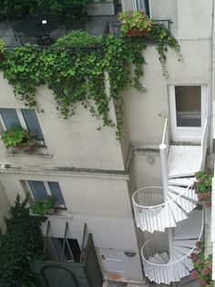 awesome spiral staircase and greenery Exterior Design, Interior And Exterior, Plants Are Friends, Stairway To Heaven, Concrete Jungle, Stairways, Greenery, Life Is Good, Backyard