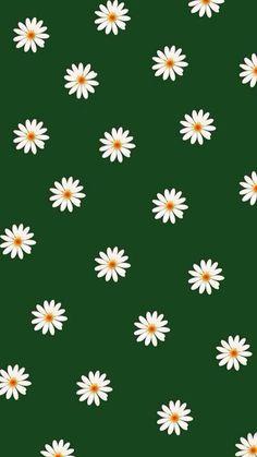 Get in Line Wallpaper - Green Flor Iphone Wallpaper, Daisy Wallpaper, Cute Patterns Wallpaper, Spring Wallpaper, Iphone Background Wallpaper, Green Wallpaper, Pastel Wallpaper, Tumblr Wallpaper, Cellphone Wallpaper