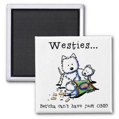 Westie Addict Square Magnet - Cairns go well with Westies, too.