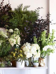 French Voguettes botanical