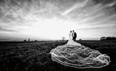 https://www.ispwp.com/contests/result/NDA=/ispwp-wedding-photography-contest-results-summer-2016