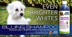 Want a flawless, sparkling white coat? Try our fan favorite, Bluing Shampoo with optical brighteners!