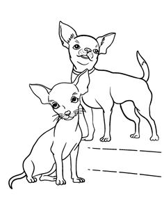Printable chihuahua coloring page. Free PDF download at http://coloringcafe.com/coloring-pages/chihuahua/.