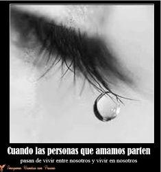 Postales De Luto Gratis Amor Condolences Grief Y Love