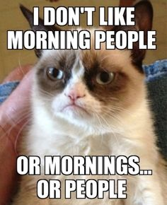 I Don't Like...Morning People, Mornings or People