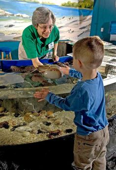 Touch Tank.