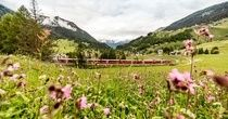 Vacation, Holiday, Travel, Meetings   Switzerland Tourism