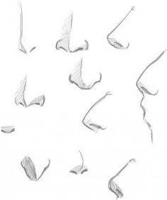 Drawing Human Nose Surface Direction
