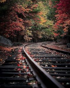 Different Aspects Of Nature Photography – PhotoTakes Autumn Photography, Photography Photos, Creative Photography, Amazing Photography, Landscape Photography, House Photography, Professional Photography, Aerial Photography, Photography Business