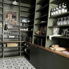pantry shelving Moss Green Pantry Cabinets and Shelves Green Kitchen Designs, Kitchen Pantry Design, Kitchen Designs Photos, Kitchen Cabinet Styles, Flat Interior, Kitchen Interior, Home Interior Design, Green Cabinets, Pantry Cabinets