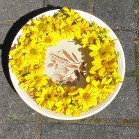 Blumenkranz wässern