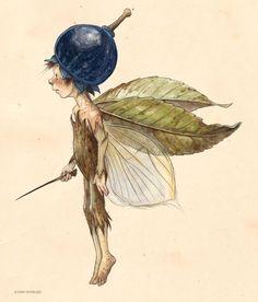 alrauna: Tony DiTerlizzi ( - The Faerie Folk Magical Creatures, Fantasy Creatures, Image Desert, Fairy Drawings, Elves And Fairies, Arte Obscura, Fairytale Art, Fairy Art, Cute Art