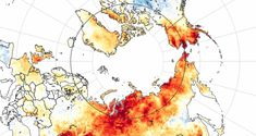 'As the tundra burns, we cannot afford climate silence': a letter from the Arctic | Climate change | The Guardian