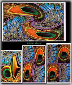 Dos plumas de pavo real y los efectos..