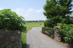 A Goodstone country road
