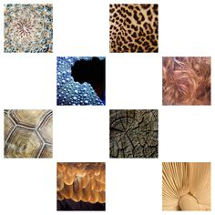 Create activities - this worksheet has been created to give students an opportunity to recreate textures using pencil.