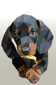 Low-poly illustration of a dachshund dog Geometric Drawing, Geometric Art, Triangle Art, Polygon Art, Dog Quilts, Dachshund Art, Arte Pop, Dog Art, Dachshunds
