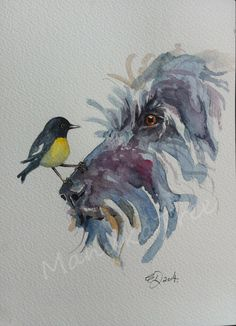 Miromiro (NZ native tomtit) and Friend - FOR SALE: http://felt.co.nz/listing/227259/Original-watercolour---Elizabeth-Dodd