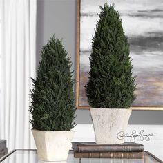 Uttermost - Cypress, Cone Topiaries, S/2