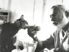 FErnest Hemingway is famous in the polydactyl cat world not for his writing but for his love of the six-toed cat. After a voyage, a ship captain presented Hemingway with his first polydactyl -- a white cat named Snowball. The Ernest Hemingway Home and Museum in Key West, Florida, is home to over 40 six-toed felines, some of which are direct descendants of Snowball.